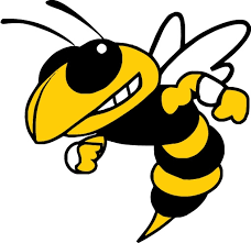 Mascot Yellowjacket
